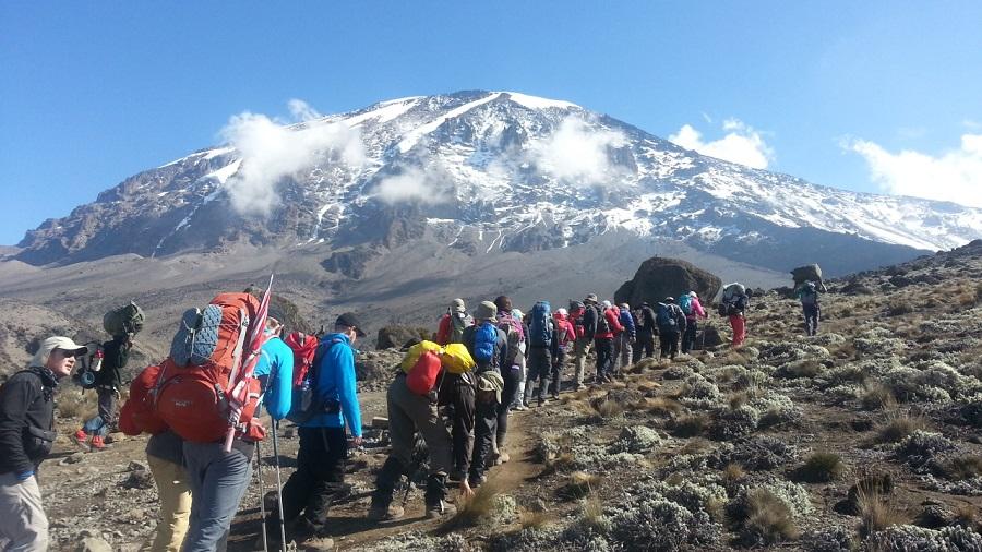 Kilimanjaro Climb | Earth's Edge