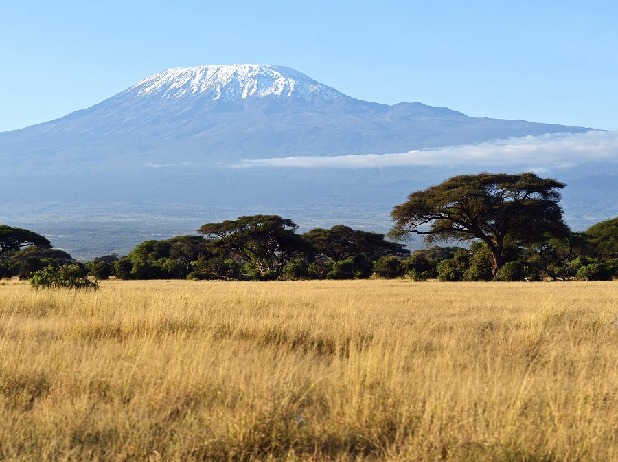 Kilimanjaro - From the National Park