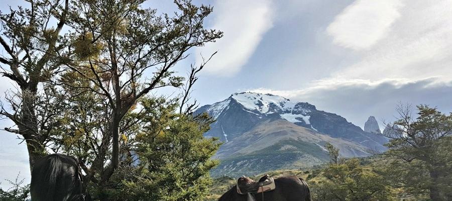 Jam & Rosie's Patagonia Adventure