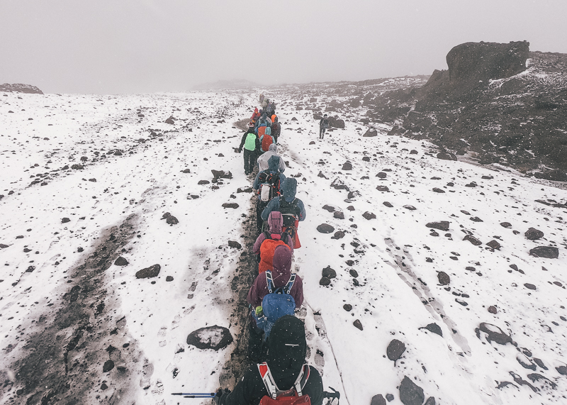 Training for Kilimanjaro