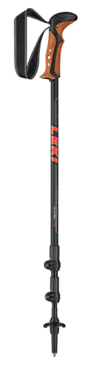 Hiking poles from Great Outdoors, Earth's Edge Christmas gifts