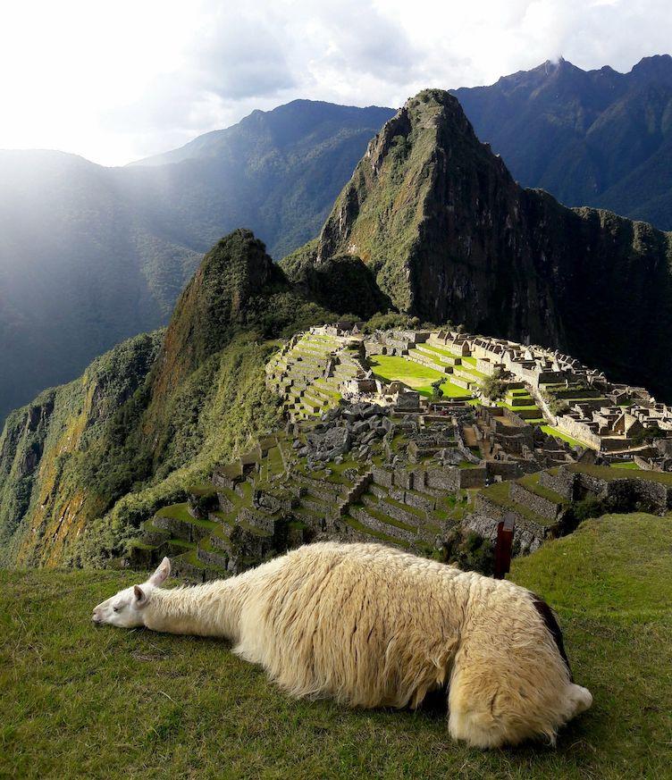 How hard is Machu Picchu trek Earth's Edge