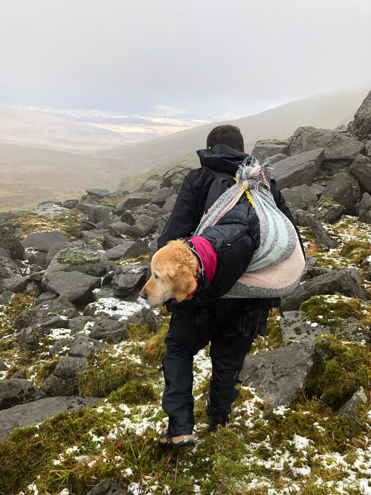 dog rescue on Wicklow mountain
