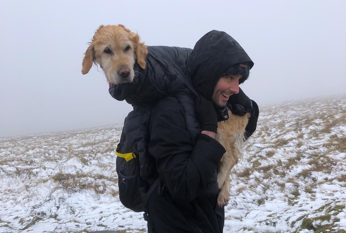 Earth's Edge doctor rescues dog on Wicklow mountains
